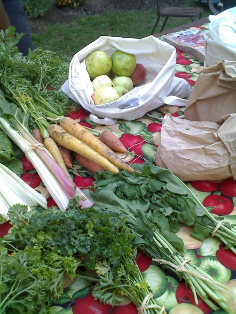 Produce grown in Toronto