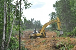 Resolute clearcutting in Barriere Lake