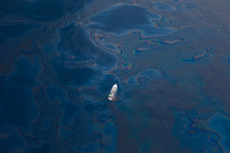 Oil Spill on the Gulf Coast