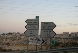 Road Signs in Palestine